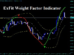 ExFit Weight Factor Indicator